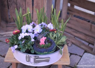 Fruelingsgeschenk-springform-kreative-idee