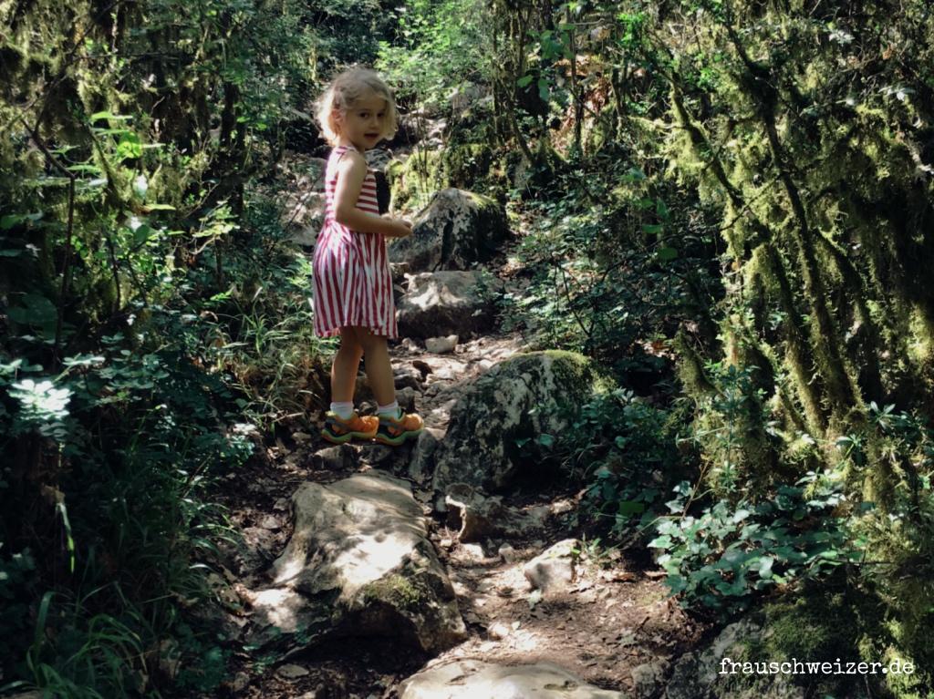 Wanderweg im Feenwald, Bois de Païolive, frankreich