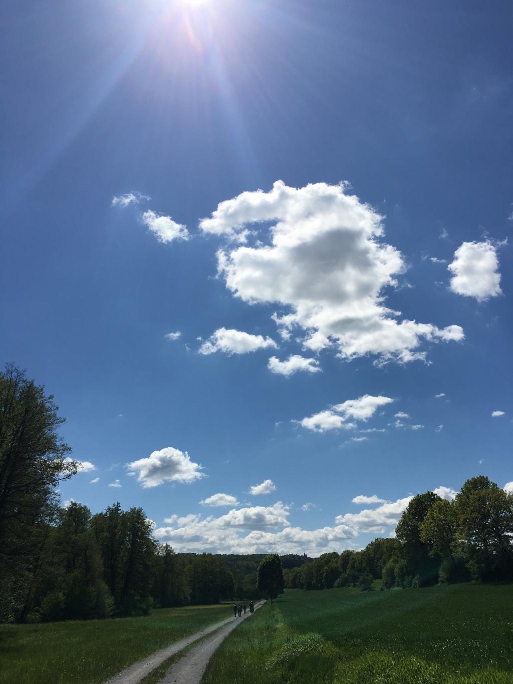 12von12 Mai 2019 frauschweizer- der Sonne entgegen