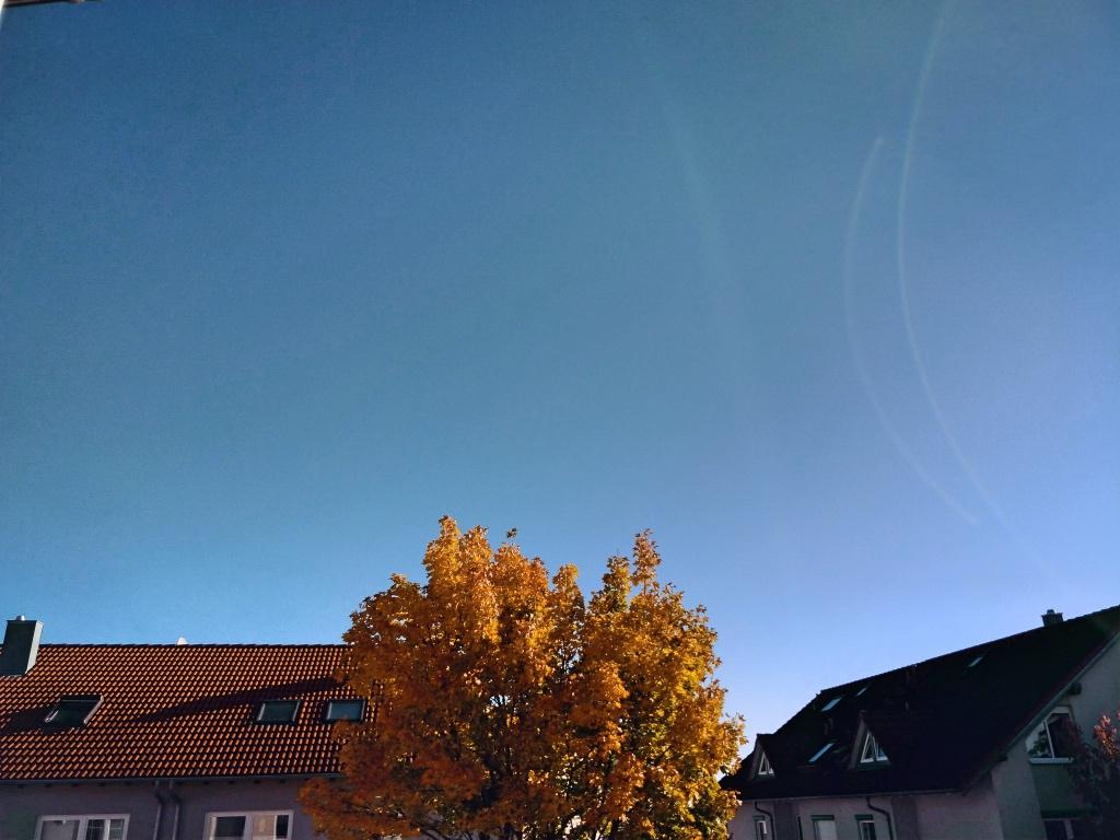 12 von 12 Oktober 19 frauschweizer