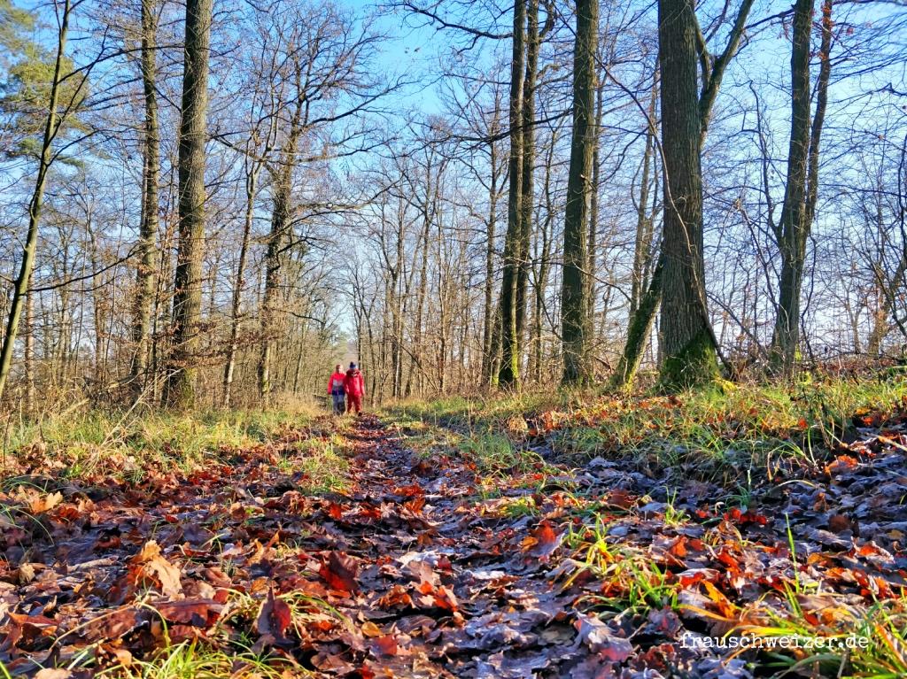 Wandern an der den Leinburg, Kleingartach