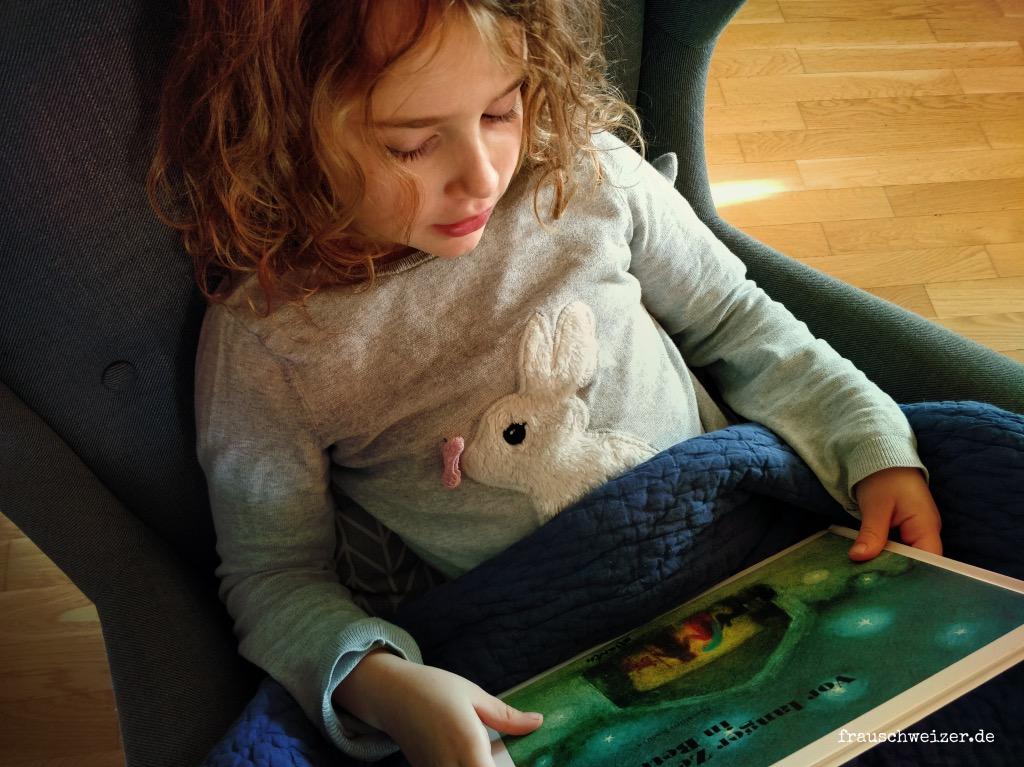 Weihnachtsbücher-zum-vorlesen
