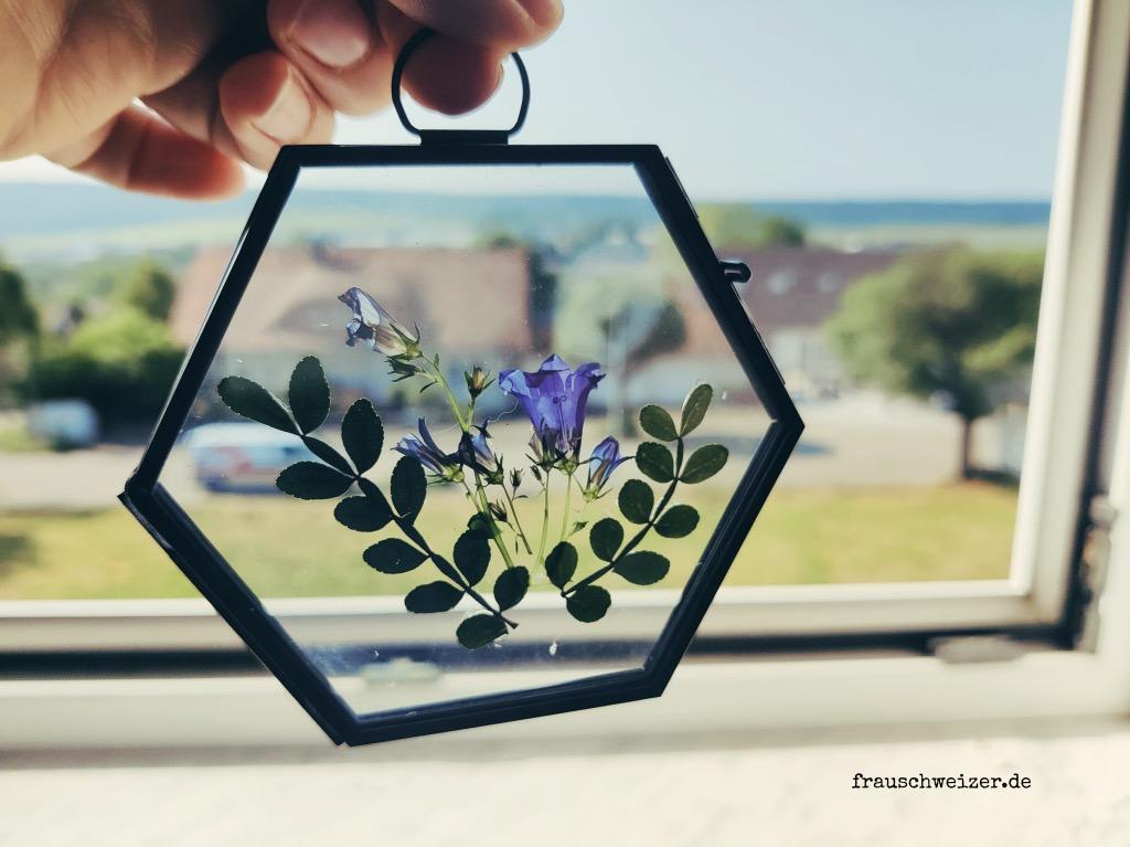 Blumen-im-glasrahmen-deko-fenster