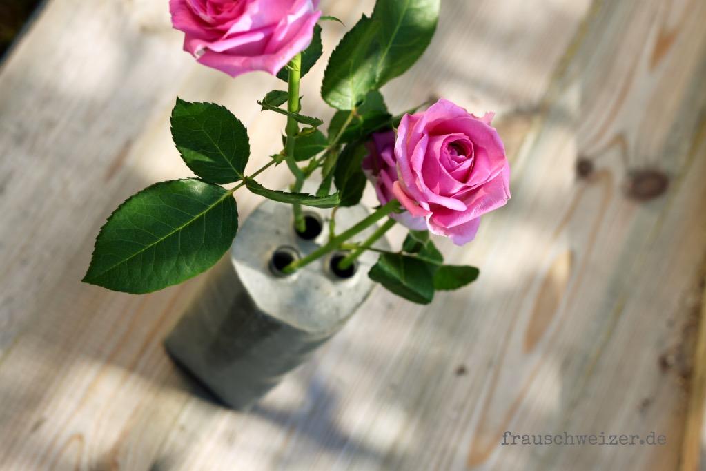 beton- vase mit Rose