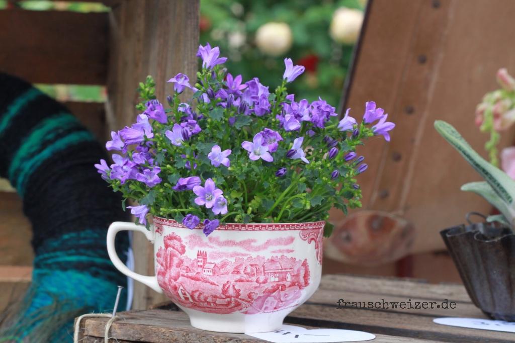 deko, Blume in Tasse