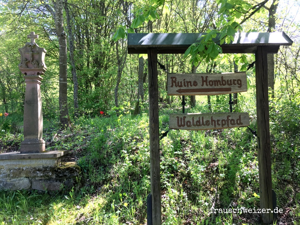 Wandern Bad Homburg, Main Spessart