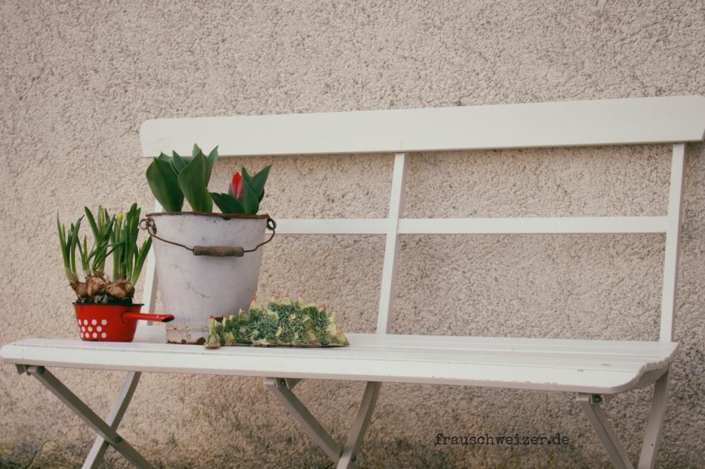 Fruehjahrsblueher im Naehkaestchen vor der Haustuere