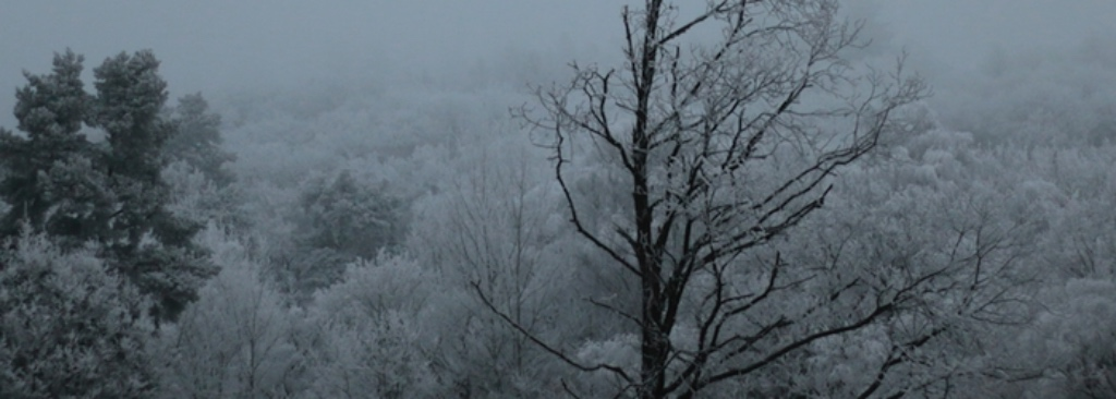 Die schönsten Winterbeiträge vieler Blogger 3
