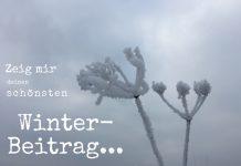 Blogparade zeig mir deinen winterbeitrag, FrauSchweizer
