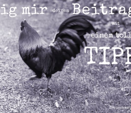 Blogparade zeig mir deinen beitrag, Tipp, Frauschweizer